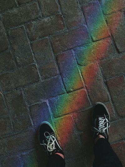 Vans OldSkool Street Rainbow Colors Art Archeologymuseum