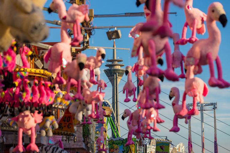 Düsseldorf, Germany Deutschland Düsseldorf Flamingo NRW Close-up Day Flamingos Focus On Foreground For Sale Hanging Large Group Of Objects Losbude No People Outdoors Pink Color Rheinkirmes Rheinturm  Selective Focus Sky Toy
