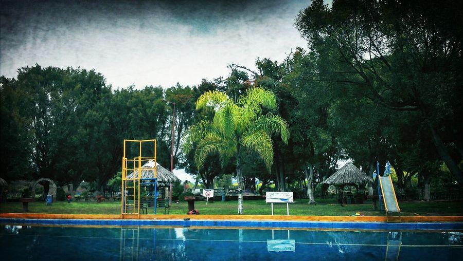 Picnic Nadar Naturaleza Piscina