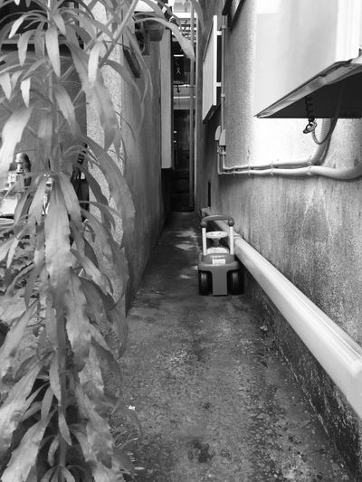 left behind_2 Shinjuku Tokyo B&w Scenery