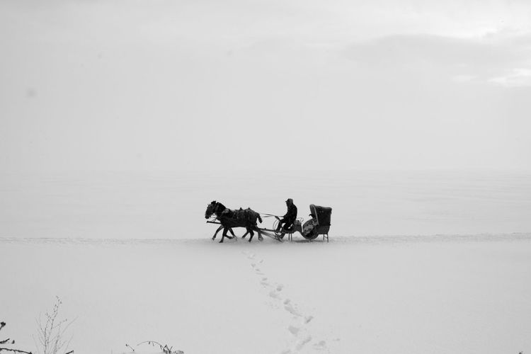 Side view of man riding horse cart on snow against sky