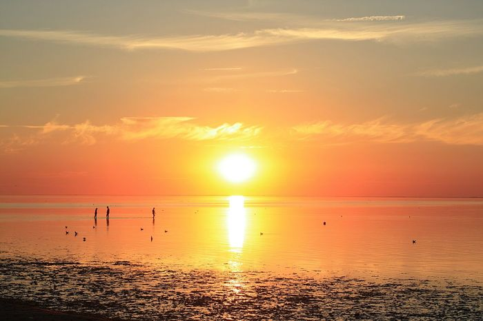 Sunset Sun Sea Beach Scenics Tranquil Scene Horizon Over Water Reflection Tranquility Dramatic Sky Beauty In Nature Travel Destinations Landscape Water Idyllic Silhouette Nature Awe Sunlight Vacations Silhouette Neuharlingersiel Live For The Story The Great Outdoors - 2017 EyeEm Awards