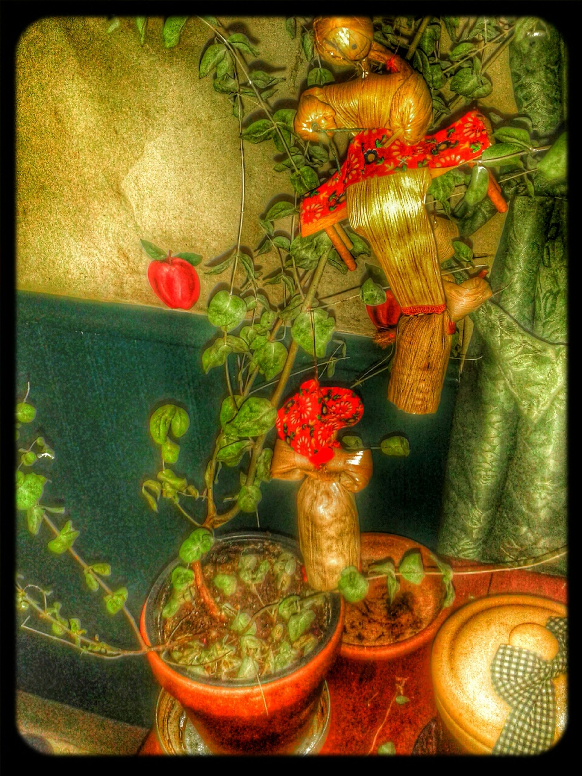 transfer print, indoors, auto post production filter, high angle view, table, potted plant, freshness, variation, multi colored, decoration, home interior, still life, flower, vase, no people, red, close-up, plant, orange color, food