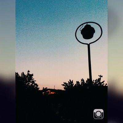 Sunset Nature Beautiful Weather