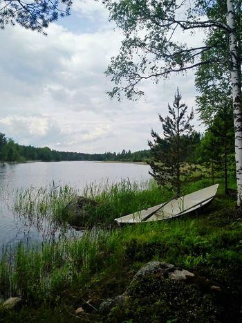 Rowingboat Lakeshore Lakeside Lakes  Summer Beautiful Finland Nature
