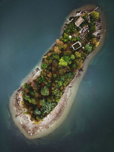 Aerial View Of Trees On Island