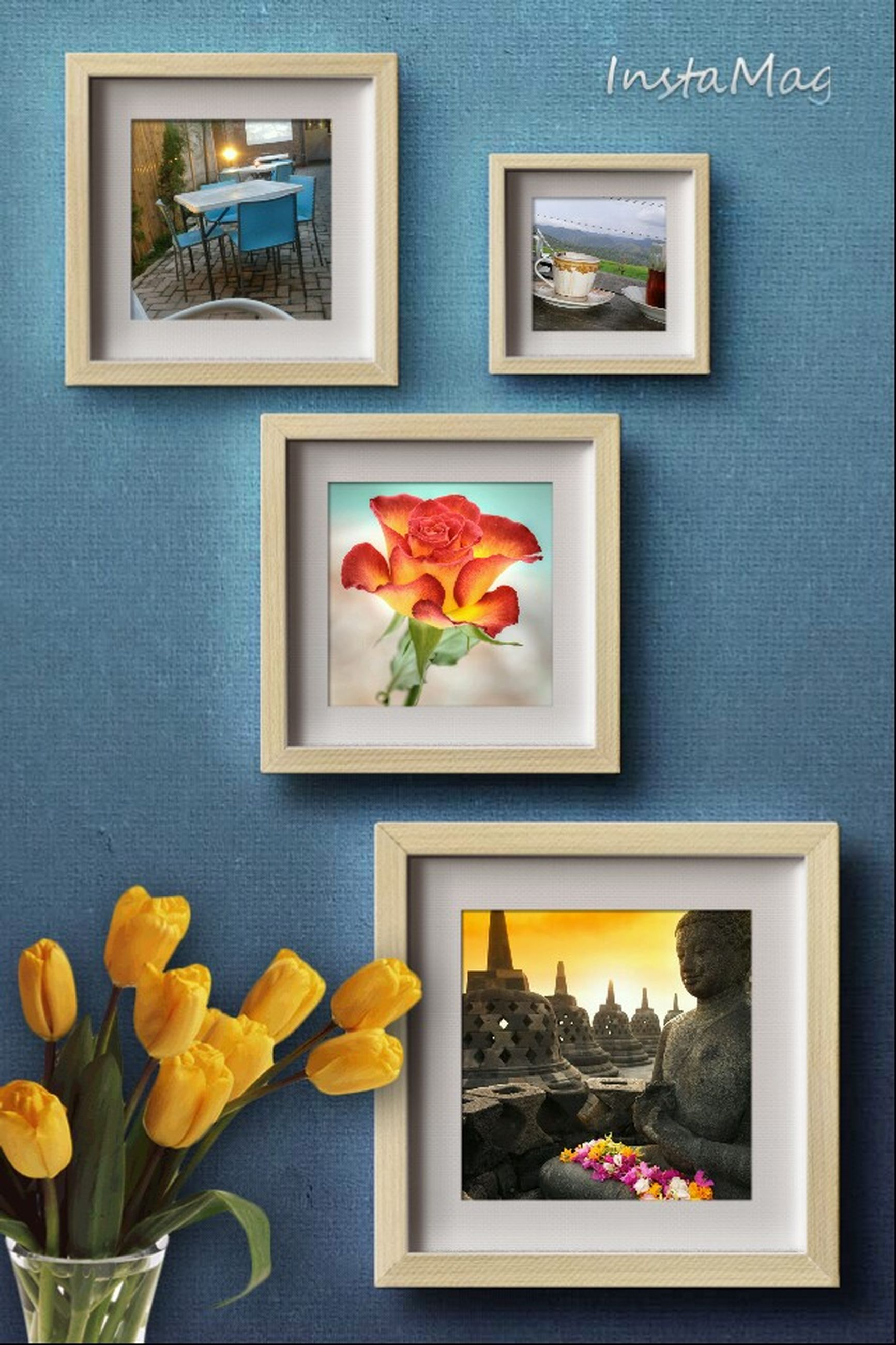 flower, indoors, vase, window, home interior, fragility, petal, glass - material, freshness, table, decoration, wall - building feature, flower head, wall, close-up, variation, no people, house, potted plant, flower arrangement