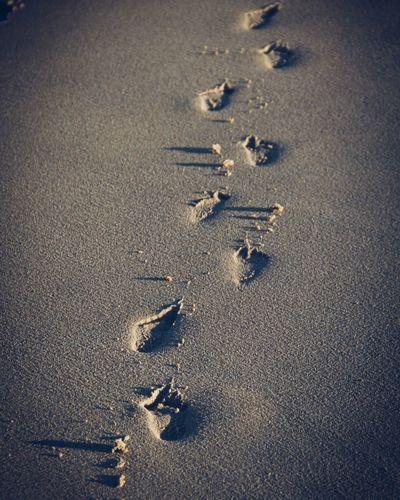 Sand High Angle