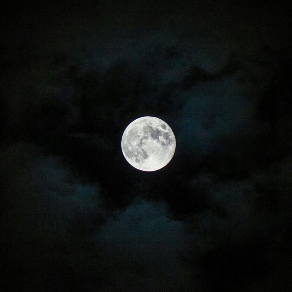 Moon Eye4photography  BeautyintheDetail Sky_collection Bella Luna, out for the night...