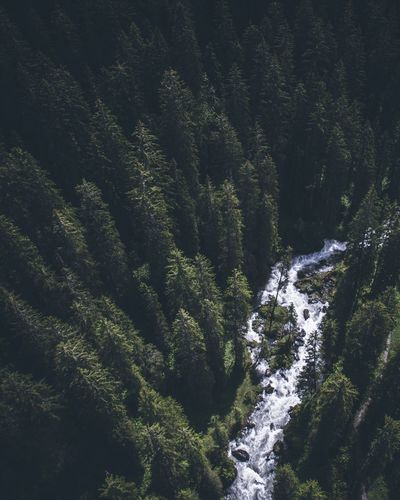 Nature Beauty In Nature Waterfall No People Tree Forest Scenics Tranquil Scene High Angle View Tranquility River Outdoors Day Holiday Mountain Water Drone  Breathing Space EyeEmNewHere The Week On EyeEm Lost In The Landscape Perspectives On Nature