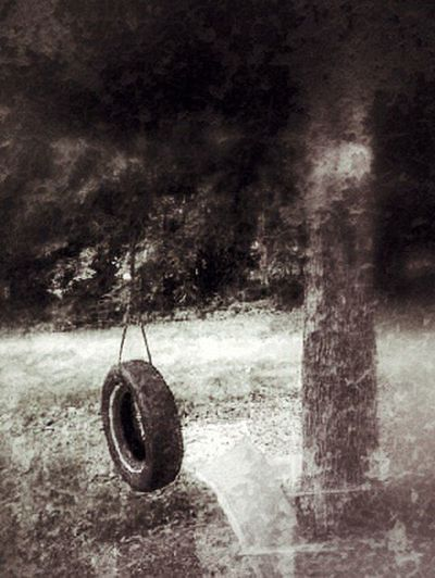Tireswing Tree Lonely So Many Memories
