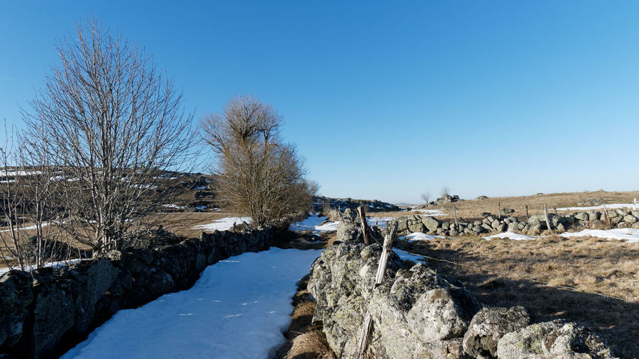 Aubrac Lozère  Path Path In Nature Stone Stone Wall Rock Rock - Object Snow Landscape Landscape_Collection Landscape_photography Land Countryside Nature Nature_collection Nature Photography Tree Hiking Hikingadventures Sky Scenics - Nature Clear Sky Blue Winter Tranquility Beauty In Nature Tranquil Scene Cold Temperature Day No People Outdoors Bare Tree Plant Environment Non-urban Scene Stream - Flowing Water