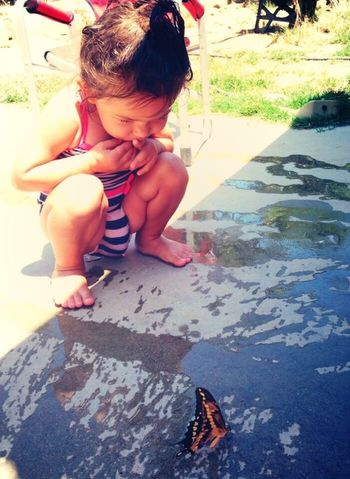 Lovephotography  Sunlight Childhood Butterfly Real People High Angle View Outdoors One Person Thoughts One Girl Only