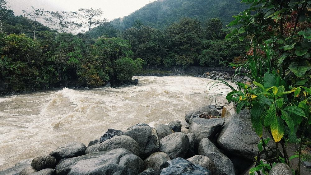 Waterfalls Nature Day Outdoors Water Beauty In Nature Tree Sky Forest Scenics Vacations Plants And Flowers Rocks And Water Ecuador Amateurphotography Green Color Landscape Colorful Summer Baños De Agua Santa