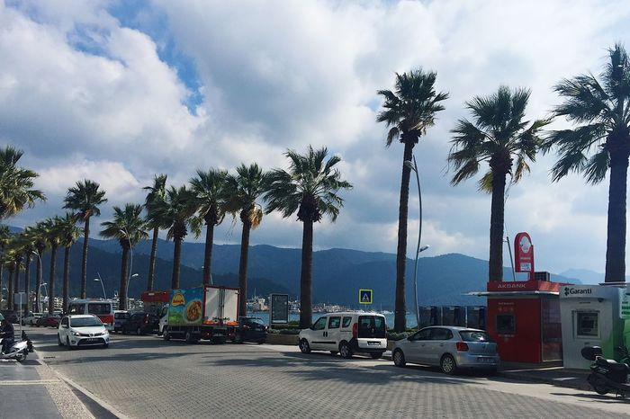 Close to the sea street, palms and a stormy weather in Marmaris, Turkey Beautiful Blog Day Green Holiday Marmaris Mountain Nature Nature Nature_collection No People Palm Palm Tree Sea Sky Spring Storm Tourism Tourist Travel Travel Blog Travel Destinations Tree Turkey Vacation