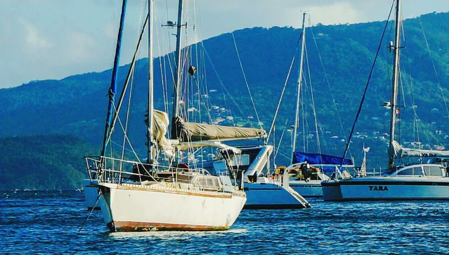Martinique Boats Hanging Out Sailing