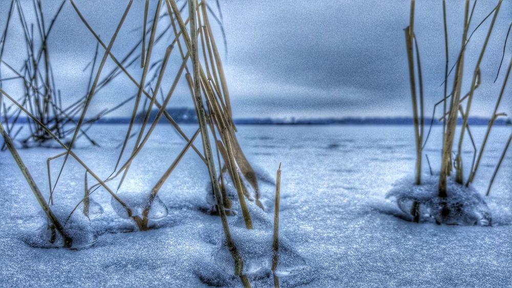 Drygrass Wintertime Showcase: January Lake Snowing Eye4photography