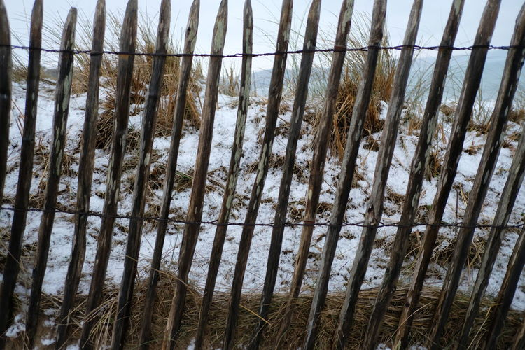 Backgrounds Greenhouse Full Frame Window Pattern Sky Close-up Snow Covered Snowcapped Cold Temperature LINE White Snowfall Winter Peak Frozen Bad Condition Snow Cold Damaged Deterioration