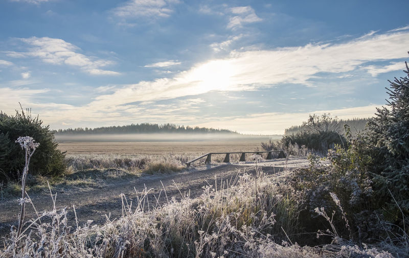 Scenic landscape with sunrise and fog at morning Beauty Beauty In Nature Bridge Cloud - Sky Colorful Colors Country Dramatic Sky Field First Eyeem Photo Foggy Frosty Landscape Mist Nature No People Outdoors Peaceful Pure Relaxing Romantic Sky Scenics Sky Sun Sunset