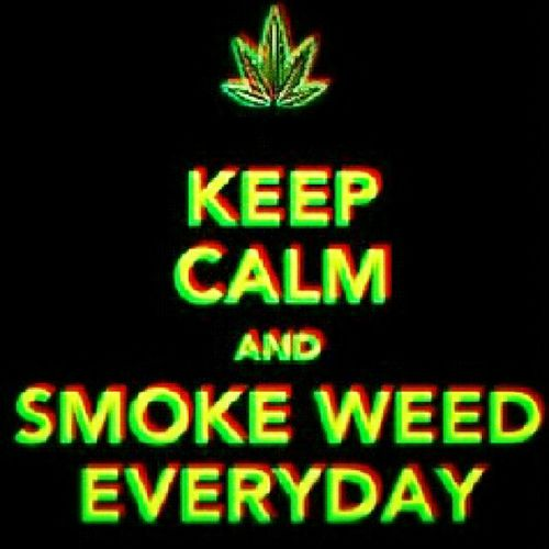 Chill Smoking Weed <3