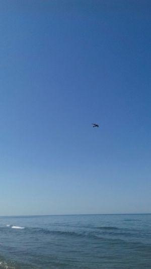Samsun Sahil Deniz Anı Yakala Harika😊🌟😊😊🍀🍀🍀🌴🌴🌿🌿🌿 Kuşlaruçuyor Kuşlar 🐦 Manzara Dediğin  Deniz Manzarası Bir Başka Güzel Memleketim Manzarasibirbaşka Kuslar Ucarken Sınır Tanımaz Sende Harikasın Günün Karesi Kuşlarrrrrr;)
