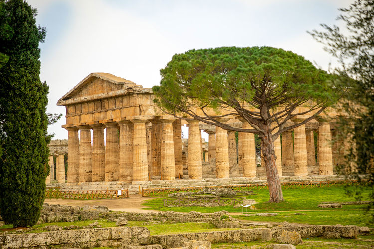 Italy Paestum Architecture History The Past Ancient Built Structure Tree Plant Architectural Column Old Ruin Travel Destinations Nature Sky Ancient Civilization Old Building Exterior Travel Day Tourism No People Place Of Worship Archaeology Ruined Outdoors Deterioration
