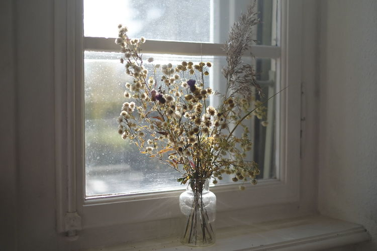 Flower vase on window sill at home