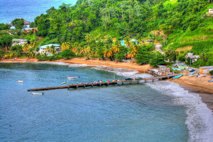 Parlatuvier Bay TobagoFishing Village Jetty Lush Foliage Mountain Range Nautical Vessel Parlatuviertobago Seascape Seashore Tobago Tobago Beach Tourism Tourism Destination Tree Trinidad And Tobago