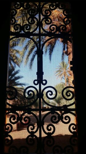 Sahara vacation Ancient Architecture Morocco Beauty Morocco EyeEm Selects Window Pattern No People Day Indoors  Architecture Built Structure Nature Glass - Material Design Close-up Silhouette Protection Tree Security