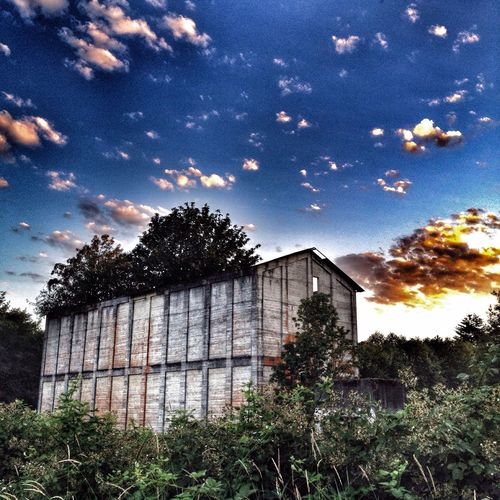 Abandoned Graffiti Nature Eye4photography  Reclaimed Trees Sky And Clouds Sunset Summer