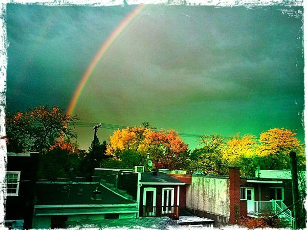 Rainbow Bye Bye