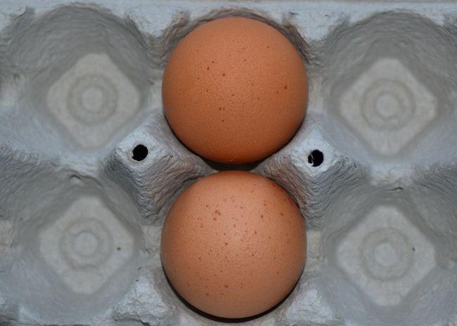 Eier Eggs... Egg Arts EyeEm Gallery Eye4photography  EyeEm EyeEm Best Edits