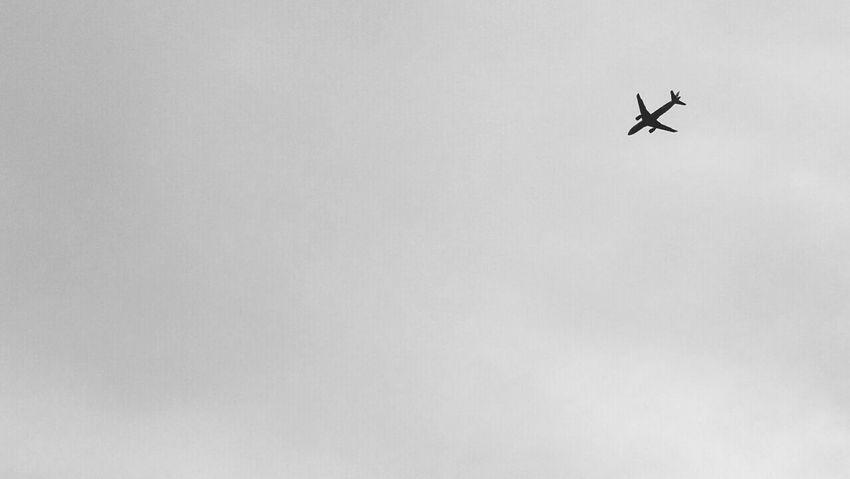 fly away... Airplane Sky Transportation Beautiful EyeEm LOST IN London Photography Holysummer EyeEmNewHere Freshness Camera - Photographic Equipment First Eyeem Photo Love ♥ EyeEm Selects Photographer Photography Themes Architecture Cloud - Sky