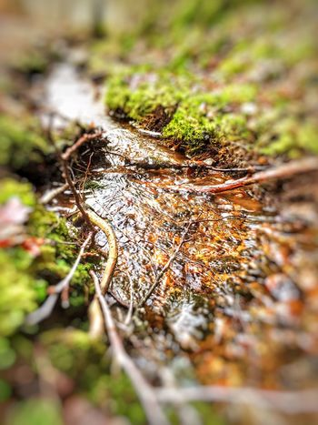 Check This Out FirstEyeEmPic Playing With Filters Taking Photos Waterstream Kontemplation Nature_collection Nature Photography Pollution In My World Clean Water Beautiful