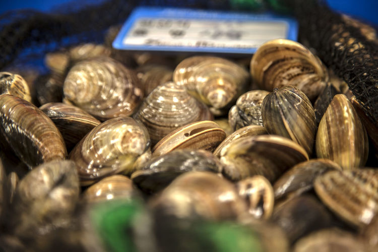 Clams at market for sale