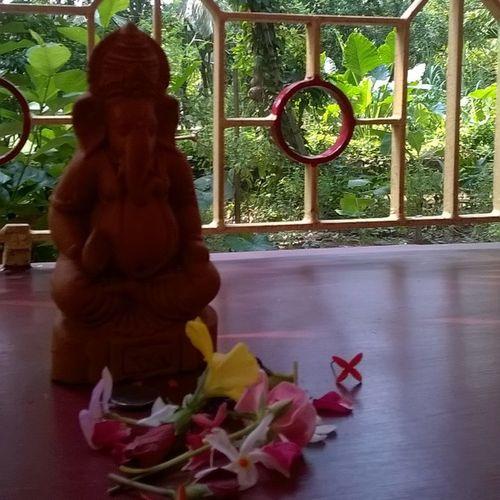 Ganesh Puja Home 🏠 Aayushi Roy Aum Namaha Ganapati