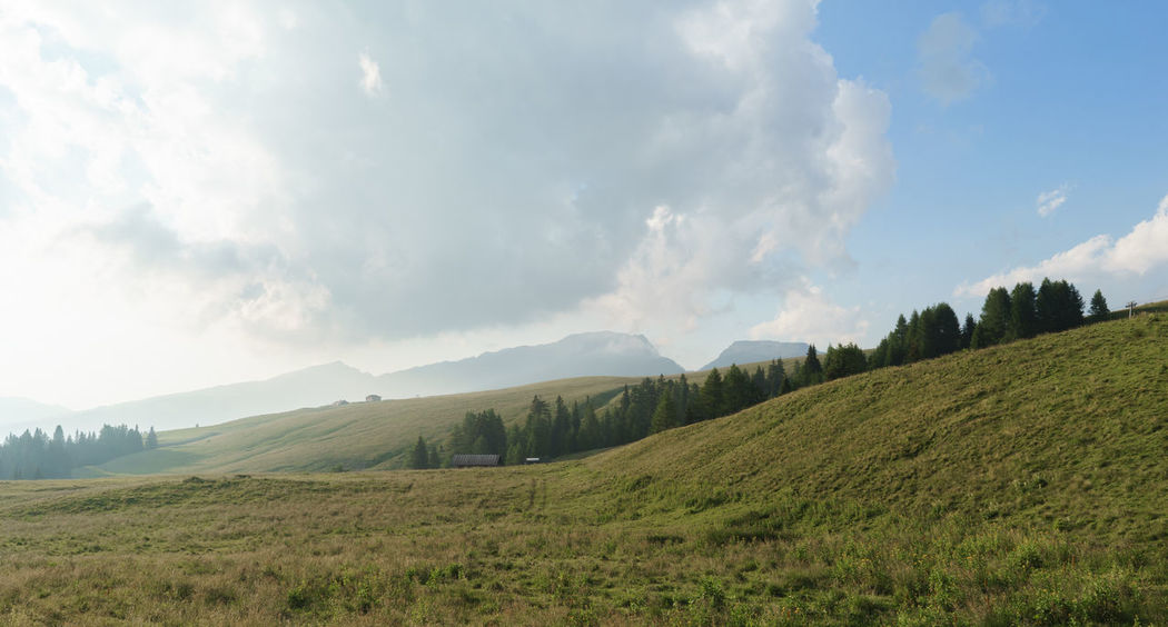 Beauty In Nature Cloud Cloudy Countryside Day Field Grass Grassy Green Color Growth Hill Idyllic Italia Landscape Mountain Mountain Range Nature No People Non-urban Scene Outdoors Passo Rolle Remote San Martino Di Castrozza Scenics Sky