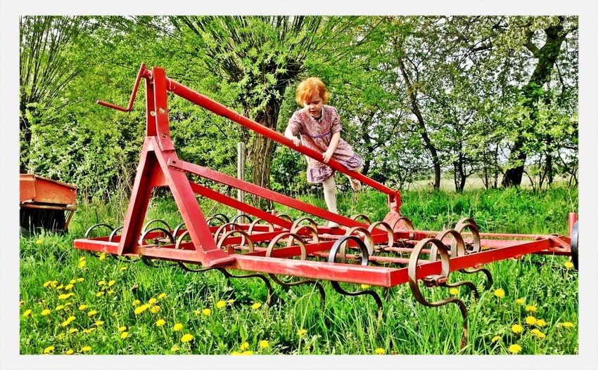 Landscape Tending To Crops Spring Agriculture