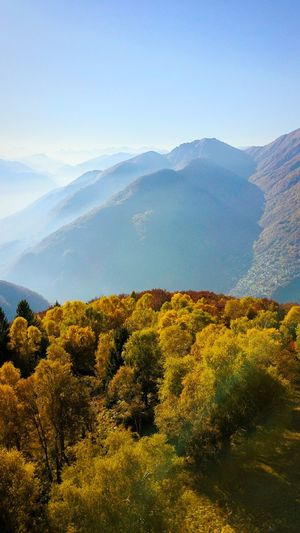 Mountain Beauty In Nature Scenics Landscape Mountain Range Nature Tree Tranquility Outdoors Autumn Dronephotography Droneshot Beauty In Nature Landscape_photography Nature_collection WeekOnEyeEm EyeEm Nature Lover Autumn Colors The Week On Eye Em Tree_collection  High Angle View Birdview