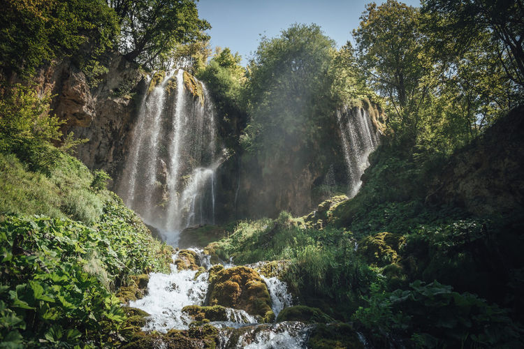 A big waterfall in the west of Serbia Waterfall Water Tree Scenics - Nature Plant Beauty In Nature Flowing Water Rock Motion Forest Long Exposure Nature Rock - Object Land No People Growth Environment Blurred Motion Solid Flowing Outdoors Rainforest Falling Water Power In Nature Waterfalls