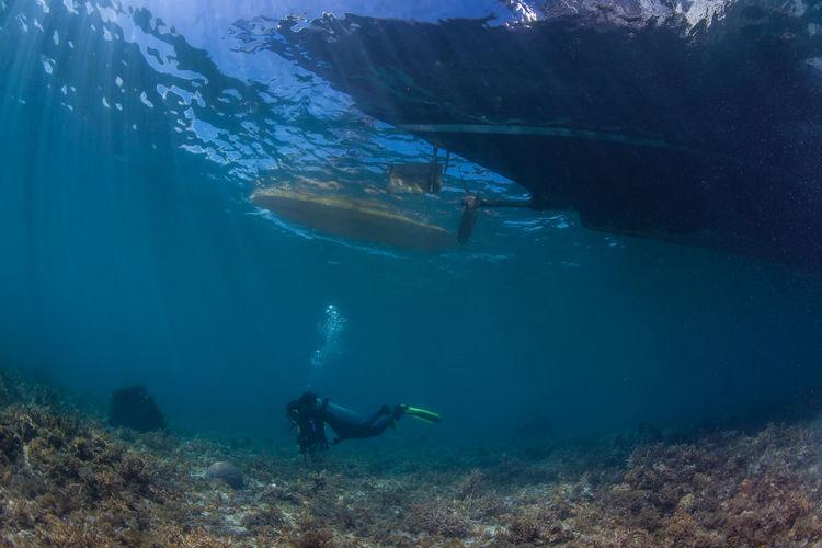 Scuba diver under sea