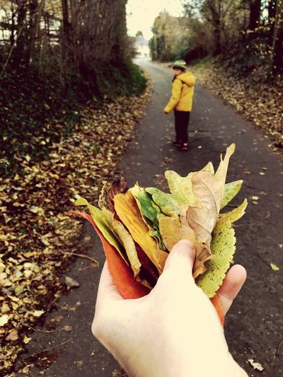 Woman holding leaf in park