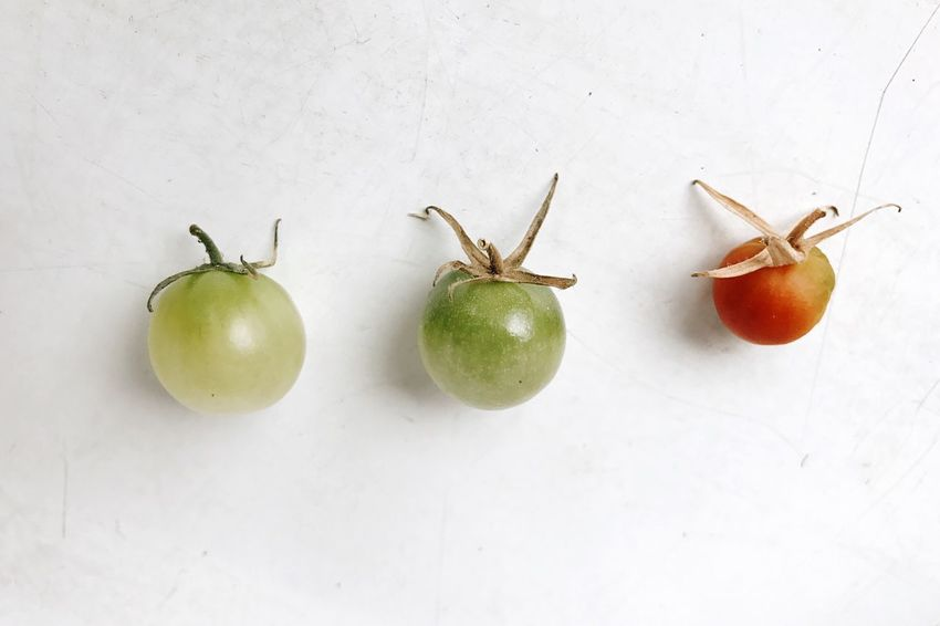 EyeEm Selects Tomato in Progress Food And Drink Food Healthy Eating Freshness White Background Close-up Foodphotography Vegetables Vegetarian Food Vegan Group Of Objects Green Color EyeEm Nature Lover Growth Still Life In A Row EyeEm Food Lovers Urban Gardening Food Stories The Still Life Photographer - 2018 EyeEm Awards The Creative - 2018 EyeEm Awards
