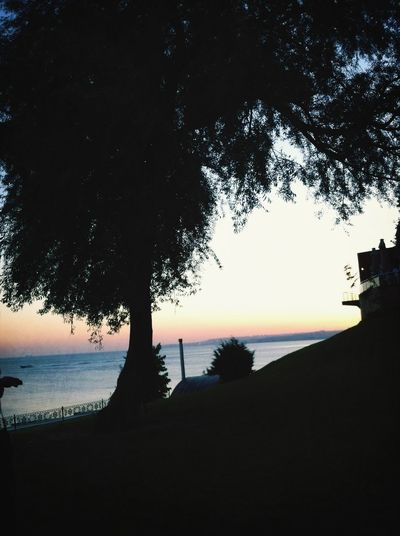 İstanbul Florya Sunshine Enjoying The Sun Sea Eyem Best Shots