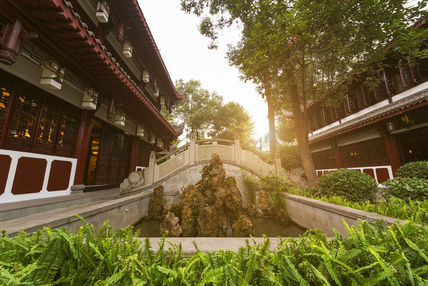 wenshu temple in chengdu Architecture Building Building Exterior Built Structure City Day Front Or Back Yard Grass Green Color Growth House Nature No People Outdoors Plant Residential District Sky Sunlight Transportation Tree Wenshu Temple Wenshuyuan