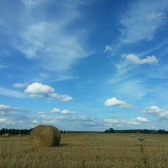 Normandia  France Paglia Panorama Cielo Azzurro Campi Nature_skyshotz Sky Landscape