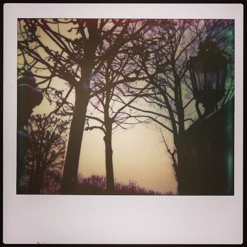 LITTLE STREETLAMP Polaroid Impossible Imagesystem Impossibleproject