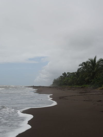 Tortuguero Beach Beach Beach Photography Beachscape Beauty In Nature Cloud - Sky Costa Rica Day Erupting Geyser Hot Spring Landscape Natural Disaster Nature No People Outdoors Power In Nature Scenics Sea Sky Tortuguero  Water