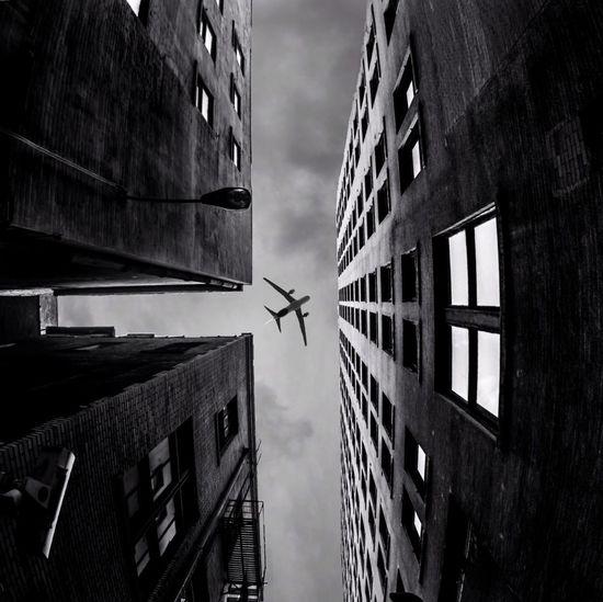 Fly Eye4photography  AMPt_community Bw EyeEm Best Shots - Black + White