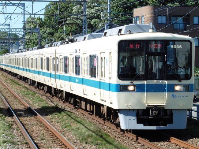 小田急 Train Odakyu